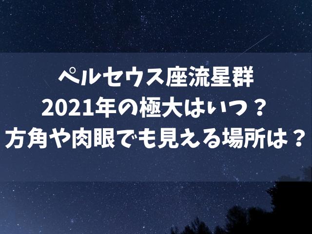 ペルセウス座流星群 2021年 極大はいつ?